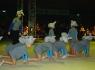 Elefantini in carovana